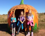 Pumpkin Patch at the Summer's farm